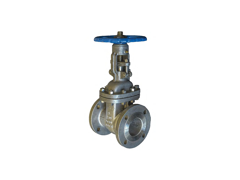 Gate Globe Check Valves